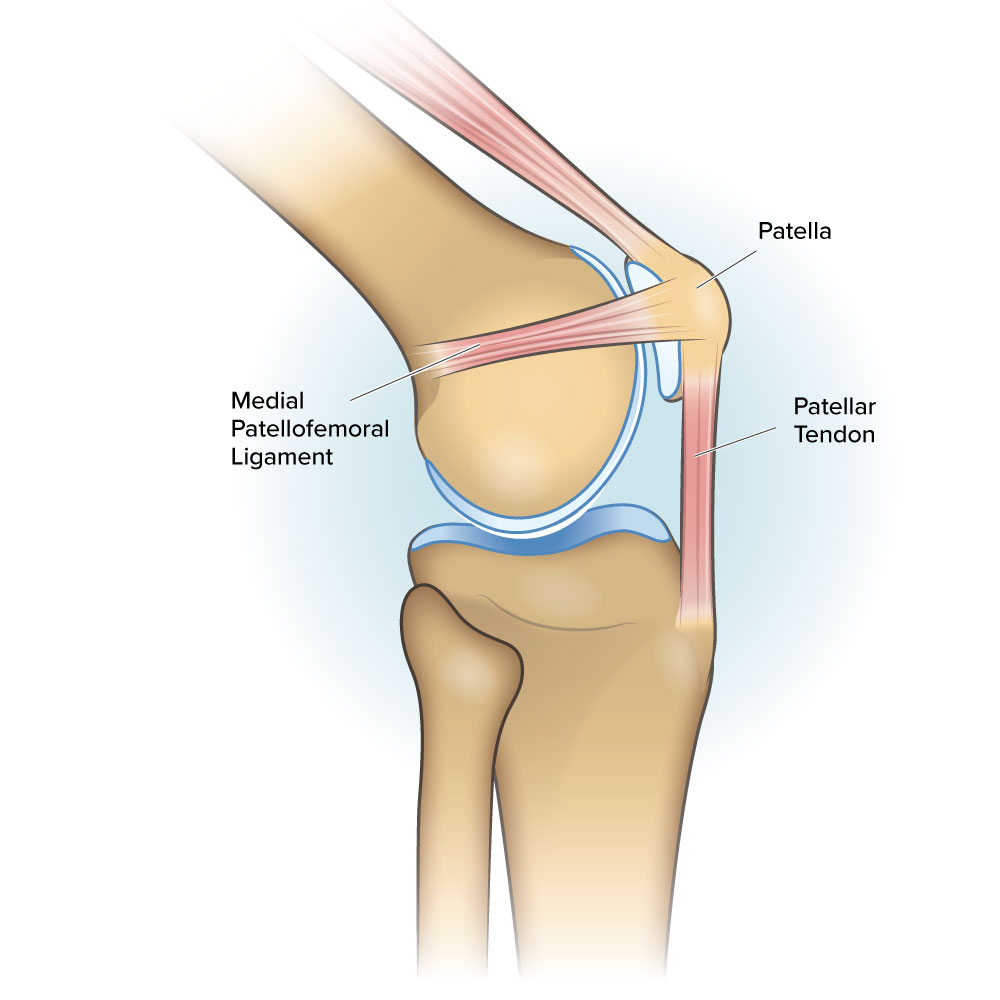 patellofemoral ligaments on the medial inner side of the left knee